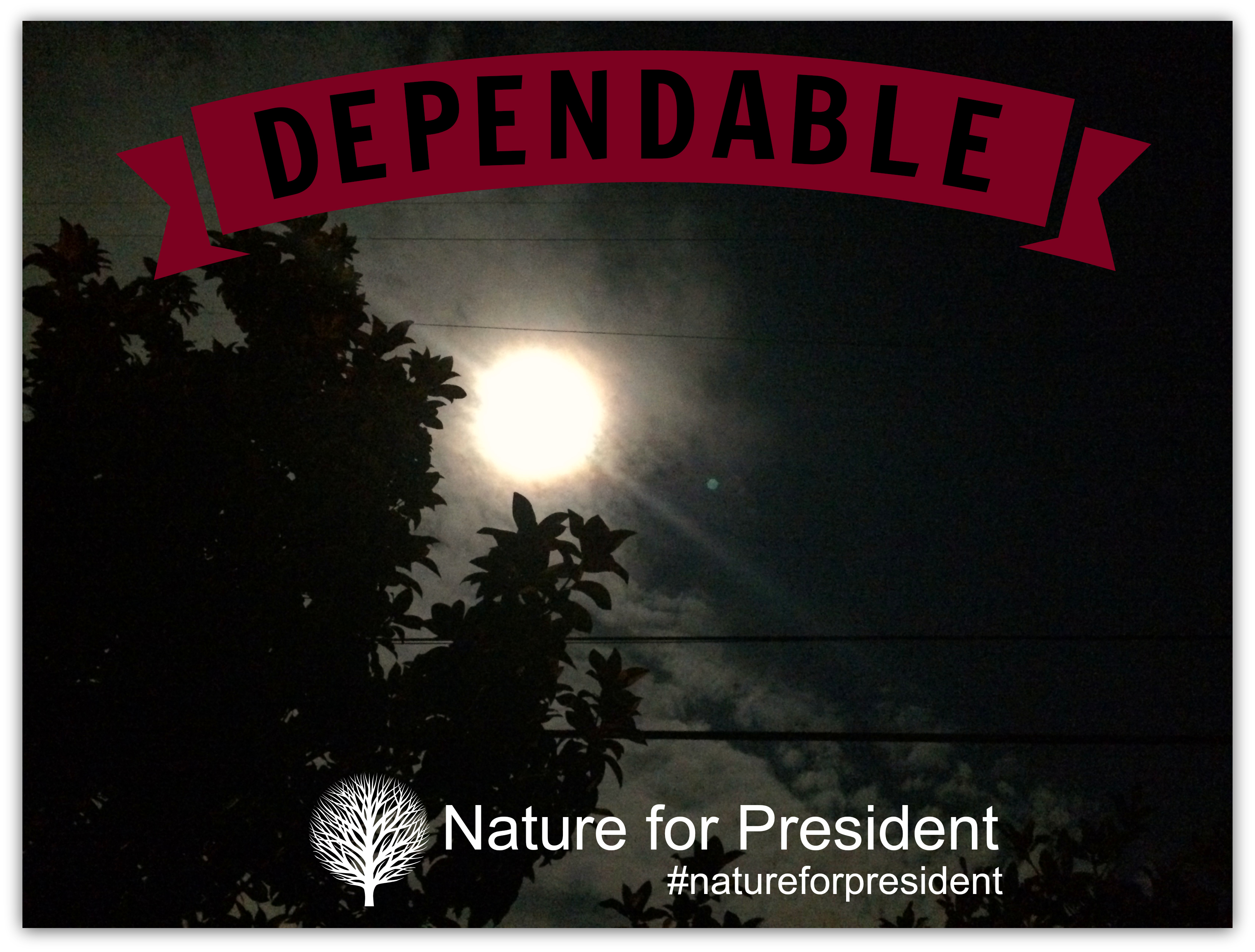 11 Dependable