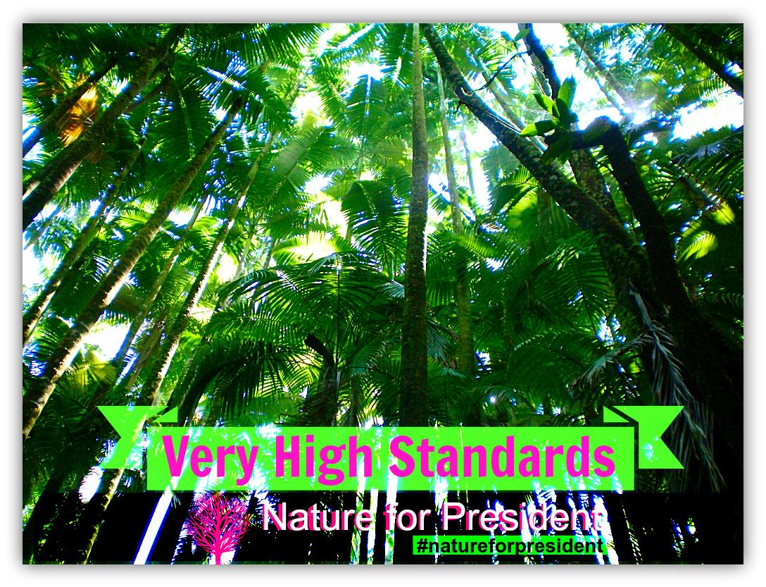 15 High Standards