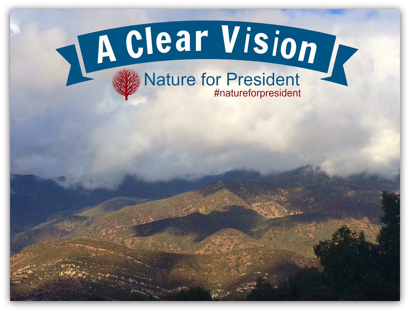 4 A clear vision